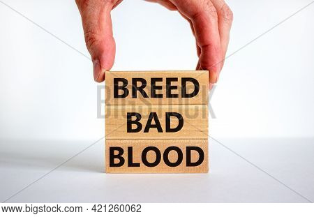 Breed Bad Blood Symbol. Businessman Holds Wooden Block With Words 'breed Bad Blood'. Beautiful White