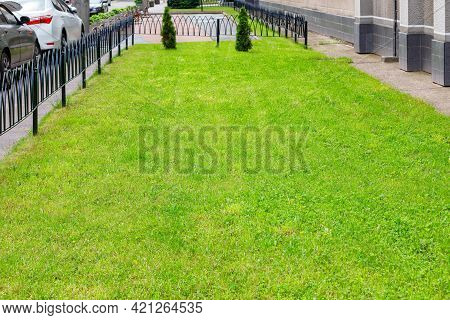 A Well-groomed Green Lawn With Trimmed Grass And Lush Slender Cypresses On A Spring Day Along A City