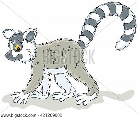 Exotic Tropical Madagascar Ring-tailed Lemur Walking, Vector Cartoon Illustration Isolated On A Whit