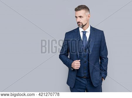 Mature Man Ceo With Grizzled Hair In Formal Suit Copy Space, Businesslike