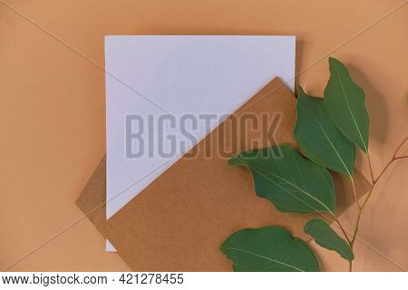 Greeting Card Mockup. Eucalyptus Populus Branch On A Beige Background. Different Paper Texturescongr