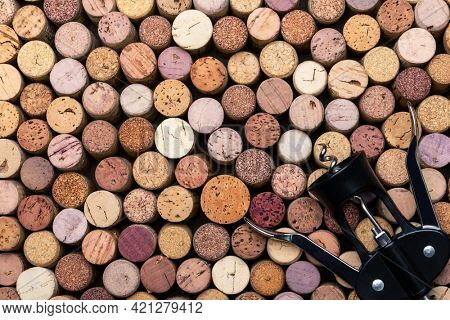 Collection of used wine corks with corkscrew top view