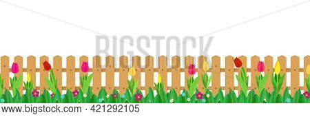 Tulips And Grass Growing In Front Of Long Wooden Picket Fence. Vector Illustration On White