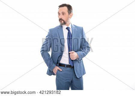 Grizzled Businessman In Formalwear. Business Success. Successful Man In Businesslike Suit.