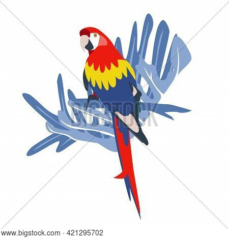 Tropical Hand Drawn Colorful Ara Parrott With Leaf Background. Macaw Parrot. Vector Illustration Iso