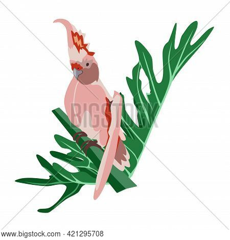 Tropical Hand Drawn Colorful Parrot With Plants And Leaves. Cockatoo Pink Plums Parrot. Vector Illus