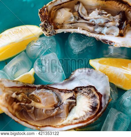 Close-up Of Fresh Open Raw Oysters On A Blue Plate, With Lemon And Ice. Healthy Seafood. View From A