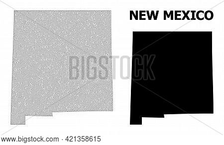 Polygonal Mesh Map Of New Mexico State In High Resolution. Mesh Lines, Triangles And Points Form Map
