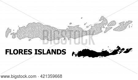 Polygonal Mesh Map Of Indonesia - Flores Islands In High Resolution. Mesh Lines, Triangles And Dots