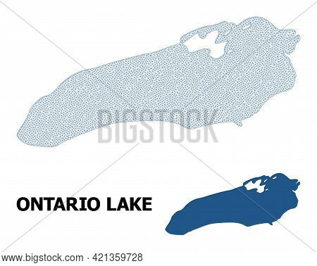 Polygonal Mesh Map Of Ontario Lake In High Resolution. Mesh Lines, Triangles And Points Form Map Of