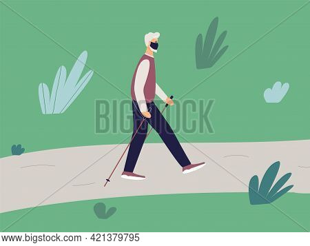 Elderly Fit Man Is Engaged In Nordic Walking With Sticks On Path In The Park. Old Athletic Man Walk