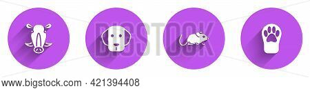 Set Wild Boar Head, Dog, Rat And Paw Print Icon With Long Shadow. Vector