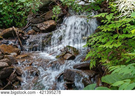 Stream Among The Stones In The Forest. Water Flows Down The Small Cascades. Wonderful Nature Backgro
