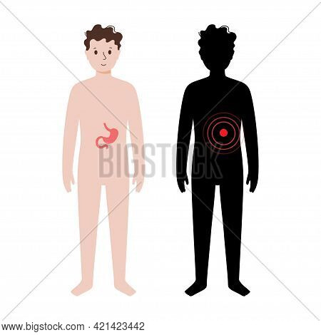 Pain Or Inflammation In Stomach. Young Man Anatomy Poster. Ache In Child Human Body. Internal Organs