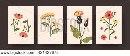 Flower Illustration Set In Pastel Colors. Set Of Pastel Decorative Flowers On Beige Background. Post