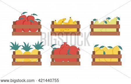 Wooden Box Of Various Fresh Fruit Set. Apple, Banana, Pear, Pineapple, Pomegranate, Lemon. Vector Ca