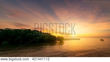 Beautiful Sunset Sky Over The Tropical Sea Near Mangrove Forest. Golden Sunset Sky. Skyline At The S