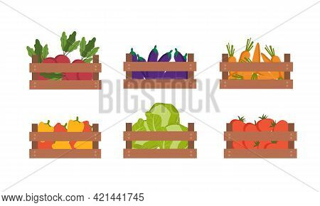 Wooden Box Of Different Vegetables Set. Beet, Eggplant, Carrot, Pepper, Cabbage,tomato. Vector Carto