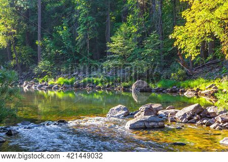 Forest stream. Charming Yosemite Valley. The shady forest is reflected in the water. Yosemite Park is located on the slopes of the Sierra Nevada