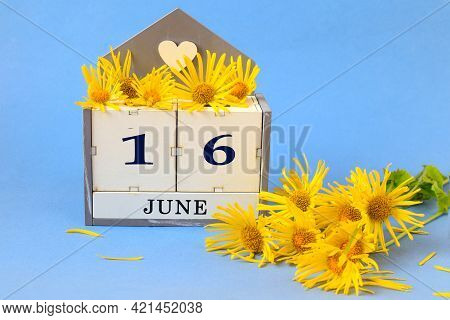 Calendar For June 16: Cubes With The Number 16 , The Name Of The Month Of June In English, A Yellow