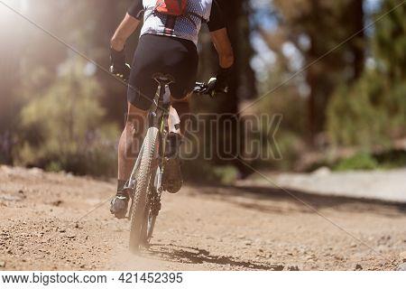 Mountain Biking Man Riding On Bike In Summer Mountains Forest Landscape