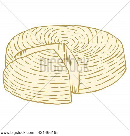 Head Of Adyghe Cheese. Vector. Whole Soft Cheese. A Cut Piece From A Whole Head Of Cheese. Hand Draw