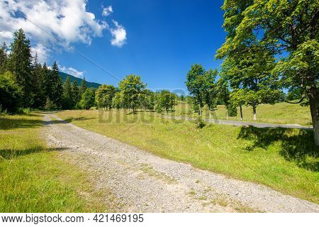 Old Country Road Through Mountainous Countryside. Beautiful Summer Landscape. Spruce Trees Along The