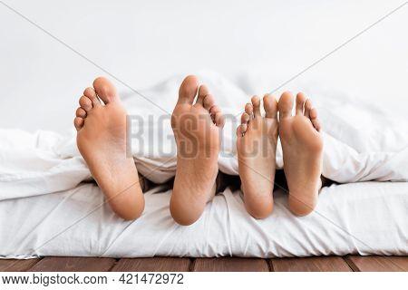 Married Couple Sleeping Lying In Comfortable Bed In Bedroom Indoor