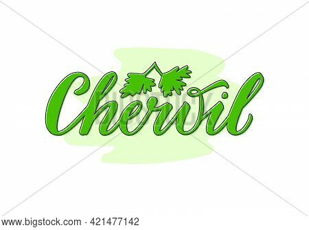 Vector Illustration Of Chervil Lettering For Packages, Product Design, Banners, Stickers, Spice Shop