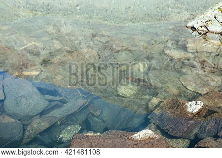 Beautiful Nature Background Of Stony Bottom In Transparent Water Of Glacial Lake In Sunlight. Sunny