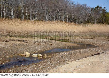 Scenic Saltwater Marsh And Tidal Stream Running Beside A Beach.