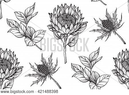 Vector Floral Seamless Pattern. Romantic Elegant Endless Background With Hand Drawn Protea And Fever