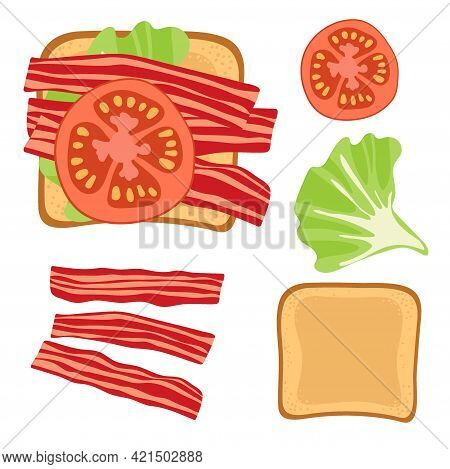 Sandwich Ingredients. Sandwich With Lettuce Leaf, Bacon And Tomato. Snack. Overhead View Of Isolated