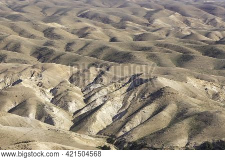 View Of The Slopes Of The Sandy Mountains Of The Judean Desert Covered With Spring Vegetation.