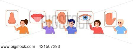 Children Hold Picture With Five Organs Senses. Kids Show Sensory Part Body Eye, Mouth, Hear, Nose, H