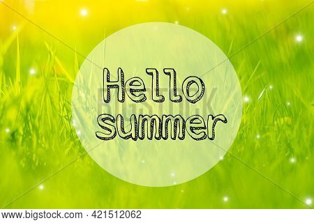 Banner Hello Summer On The Grass Background . Spring Grass In The Evening Light. Nature. Young Green