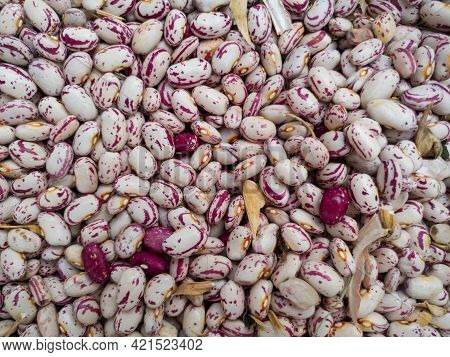 Bunch Of Common Beans, Healthy Diet Rich In Protein, Carbohydrates And Fiber