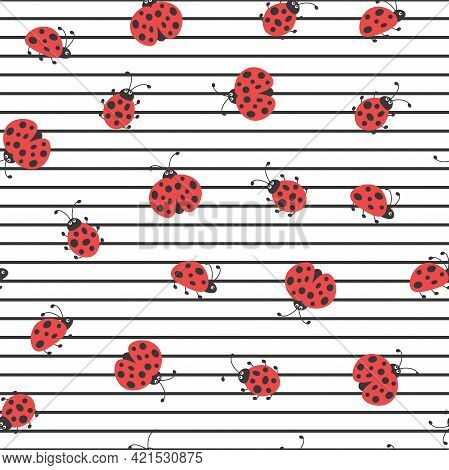 Seamless Summer Stripy Background. Flying And Creeping Red Ladybugs And Black Lines Background. Brig