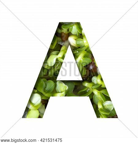 Font On Micro Greenery.the Letter A Cut Out Of Paper On The Background Of Sprouts Of Fresh Bright Mi