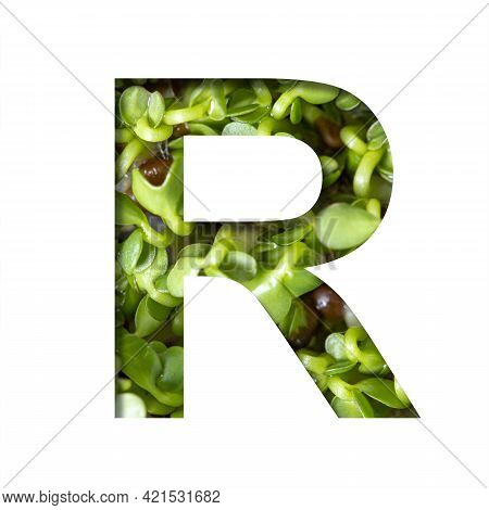 Font On Micro Greenery.the Letter R Cut Out Of Paper On The Background Of Sprouts Of Fresh Bright Mi