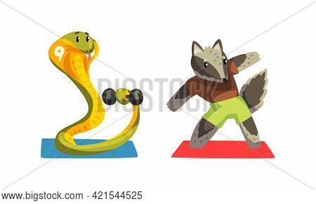 Cute Animals Wild Animals Doing Sports Set, Snake Exercising With Dumbbell And Raccoon Doing Side Be