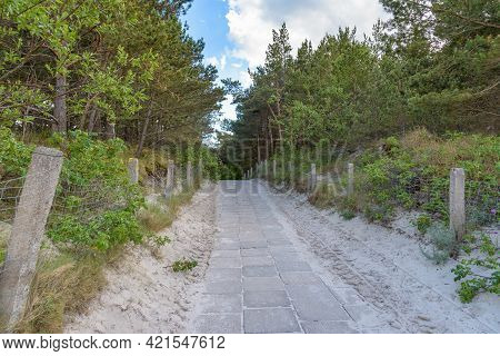 Paved Beach Entrance Through The Dunes At Baltic Sea In Poland