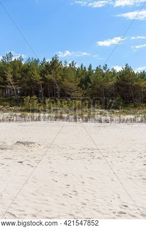 Wide Sandy Beach And An Overgrown Dunes At Baltic Sea