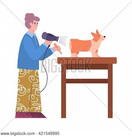 Grooming Specialist Styling A Fur Of Dog, Cartoon Vector Illustration Isolated