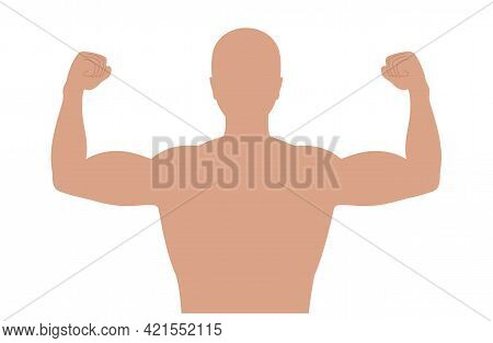 Strong Contracted Biceps And Triceps Poster. Athletic And Healthy Lifestyle Concept. Human Muscular