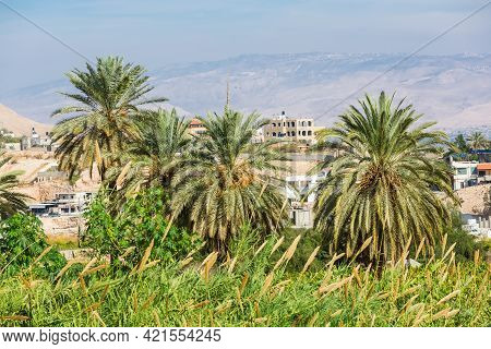 Palms And Landscape Near The Monastery Of The Temptation And The Mount Of Temptation In Jericho, Pal