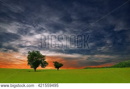 Incredibly Beautiful Nature.Art Photography.Fantasy Design.Creative Green Background.Amazing Colorful Landscape.Lonely Tree.Perfect Grass Field.Beautiful Cloudscape.Beautiful Orange Sunset.Blue Sky and Clouds.Artistic Wallpaper. Sun,travel,sunrise.