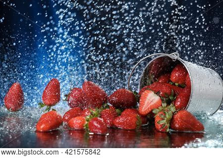 Strawberries In A Metal Bucket Closeup Under The Water Drops In A Dark Blue Background. Healthy Life