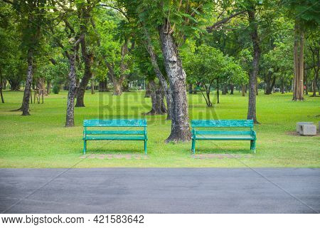 Two Green Benches Beneath On Trees In Park To Allow People To Relax When They Travel, Exercise And O