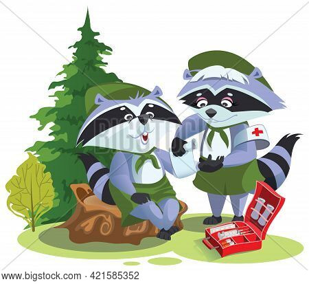 Scout Raccoon Bandaging First Aid On Hike. Boy Scout Medic